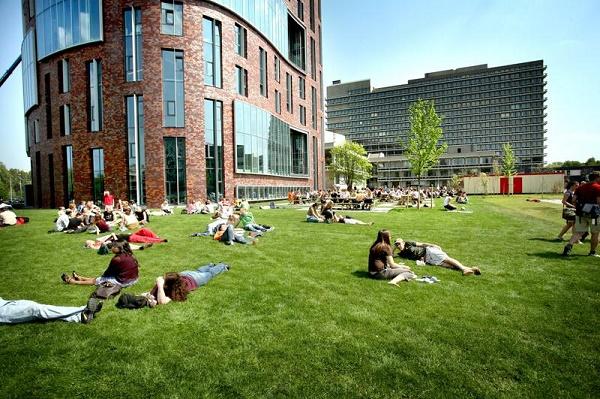 Ở Hà Lan các sinh viên được học cách phân tích và giải quyết các vấn để một cách độc lập