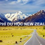 Chi phí du học New Zealand 2020 tùy thuộc vào nhiều yếu tố