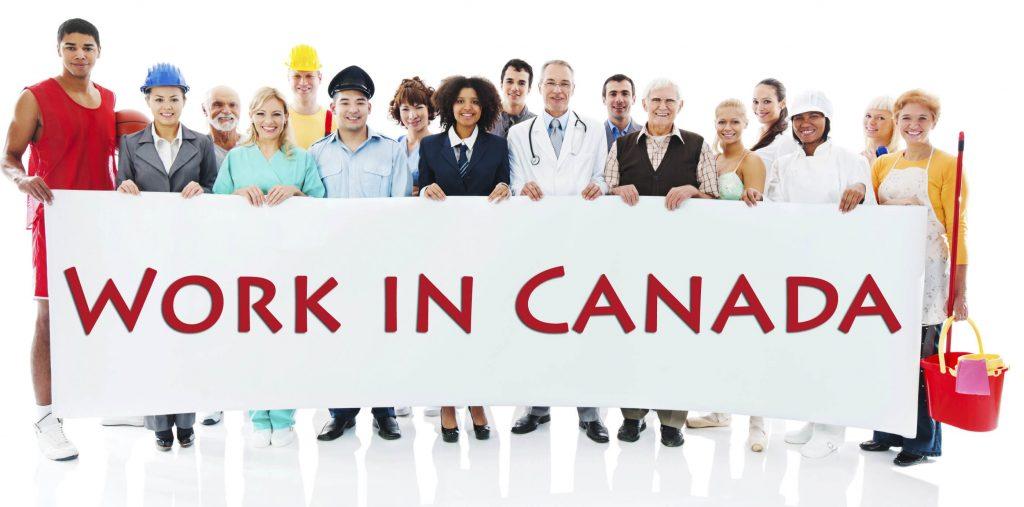 Thị trường việc làm tại Canada rất sôi động